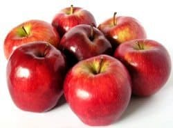 Dog snack Apples