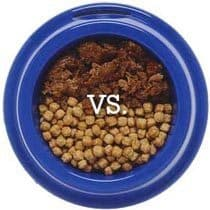 Canned Versus Dry Dog Food